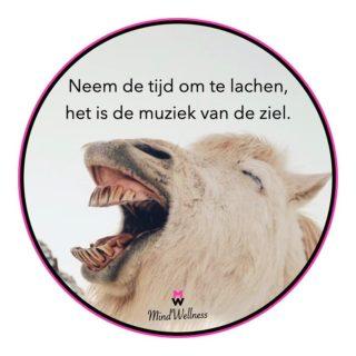 Lach ❥   #positiviteit #dankbaar #gedachten #positiefdenken #quote #motivatie #rust #geluk #genieten #balans #gevoel #liefde #moment #kracht #respect #vertrouwen #zelfzorg #hasselt #wijsheid #motivatie #zelfvertrouwen #verandering #leven #verlies #belgië #spiritualiteit #welzijn #positief #optimisme #vertrouwen #gevoelens #inspiratie